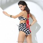 Two piece Sexy Retro Strapless Tie neck Elastic cup Bikini Slim fit Halter White Bubbles Black Swimsuit