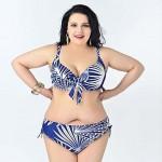 2015 Summer Big Women Bikini Plus size Swimsuit Nz Big Bra Sexy Lingerie Printing Bikini For women swim suit Bathing Suit